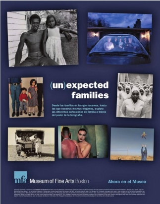 (un)expected families