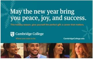 May the new year bring you peace, joy, and success