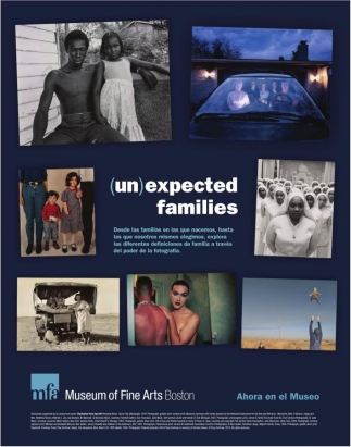(Un) Expected Families